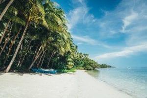 Invest Islands Lombok Island