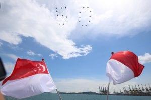 singapore's investment in Indonesia