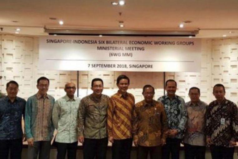 singapore-indonesia FDI treaty