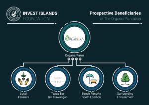 Prospective Benefits chart ORGANIIKA INVEST ISLANDS FOUNDATION