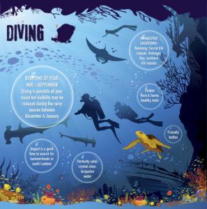 Lombok Scuba Diving