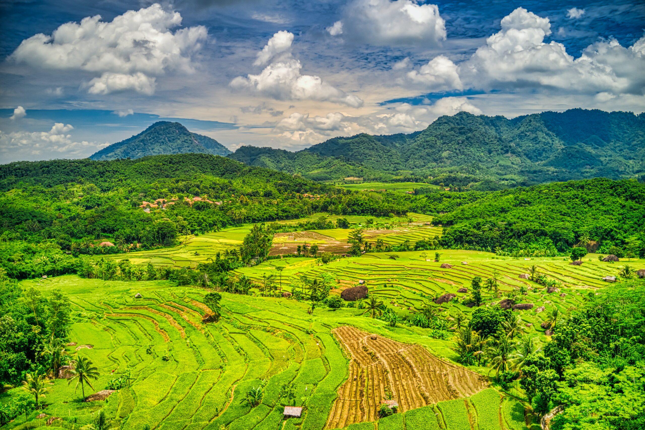 Indonesia sets 2060 net zero goal